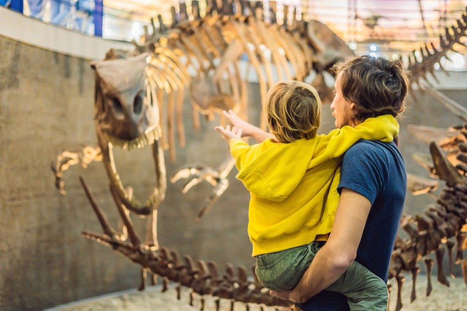 Best Kansas City Museums for People of All Ages